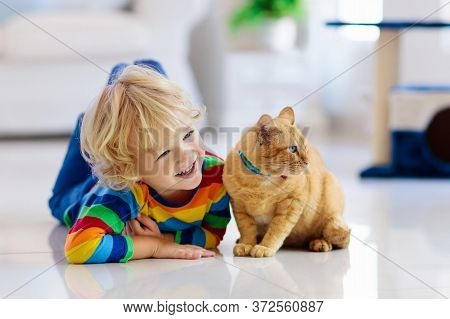 Child Playing With Cat At Home. Kids And Pets. Little Boy Feeding And Petting Cute Ginger Color Cat