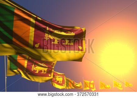Cute Holiday Flag 3d Illustration  - Many Sri Lanka Flags On Sunset Placed Diagonal With Selective F