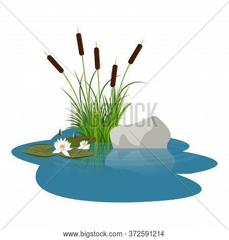 Bush Reeds With Water Lily Flowers And Leaves Close To Stone On The Water. Reeds Stern And Grey Ston