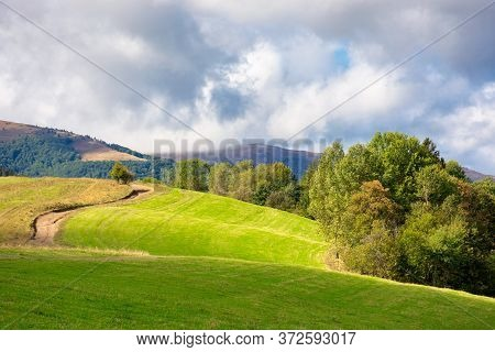 Grassy Meadow On A Sunny Day In Mountains. Beautiful Countryside Landscape In Dappled Light. Sky Wit