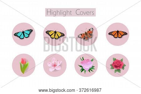 3d Realistic Monarch Peacock Butterfly Social Media Cover. Highlights Stories Flower Rose Tulip Temp