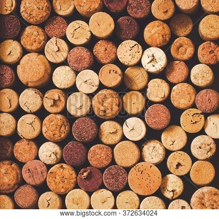 Natural Brown Red White Sparkling Wine Champagne Cork Top View Square Background In Faded Hipster St