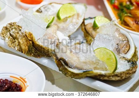Fresh Oysters Close-up On A Dish, Served With Oysters, Lemon And Ice. Healthy Seafood. Oyster Dinner