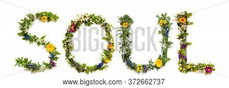 Flower And Blossom Letter Building Word Soul