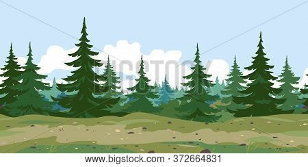 Ground Trail Along Spruce Forest With Green Trees Game Background Tillable Horizontally, Tourist Rou