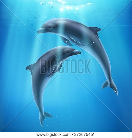 Dolphin In Sea Realistic And Colored Composition Two Dolphins Swim Underwater And Sun Ryes Break Thr