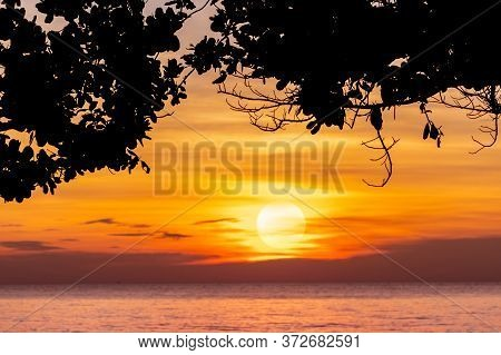 Summer Sunset Sky At Tropical Beach. View From Under The Tree. Silhouette Tree And Orange Sunset Sky
