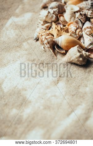 Various Beautiful Seashells On Sand With Place For Text.