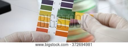 Close-up Gloved Hands Holding Litmus Indicator. Indicator For Determining Reaction Medium Soil. Cont