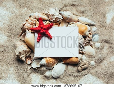 Blank White Letterhead With Red Starfish Lying On A Pile Of Seashells. Place For The Text.