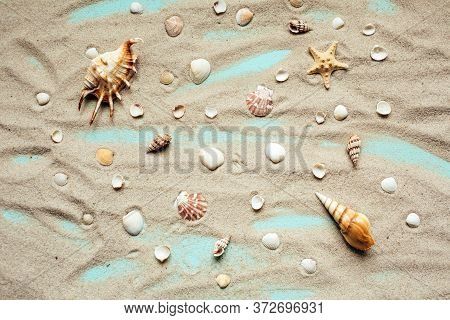 Different Types Of Seashells Are Spread On Sand On A Turquoise Background. Top View.