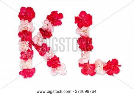 Flower Font Alphabet K L Set (collection A-z), Made From Real Carnation Flowers Pink, Red Color With