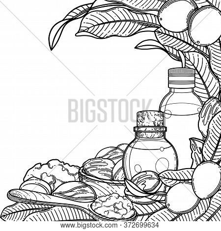 Graphic Oil Bottles Surrounded By Shea Plants And Butter.