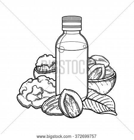 Graphic Oil Bottles Surrounded By Shea Plants And Butter