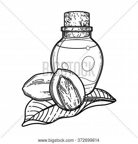 Graphic Oil Bottles Surrounded By Shea Plants