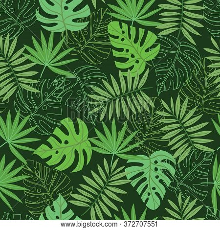 Vector Green Tropical Palm And Jungle Leaves Seamless Pattern Background