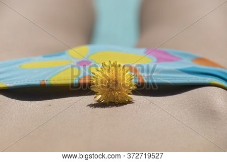 Woman In Bikini With Flower Close-up. Concept Of Female Health, Fertility And Intimacy