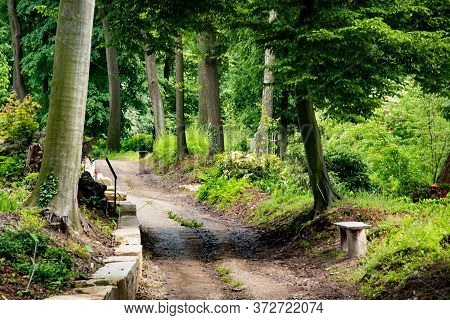 Path In The Old Green Park. Beautiful Peaceful Landscape. Preety Scenic View Of Amazing Polish Natur