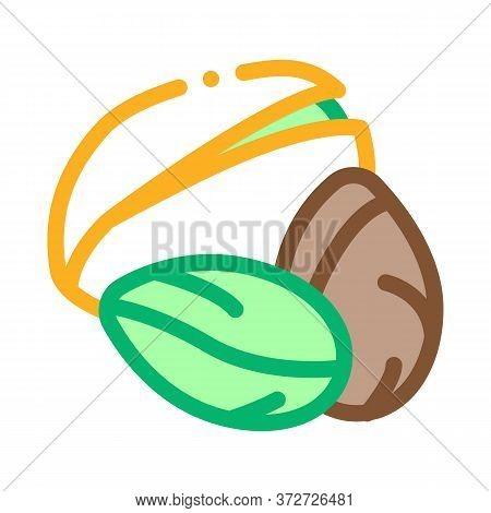Pistachio Nut Icon Vector. Pistachio Nut Sign. Color Symbol Illustration
