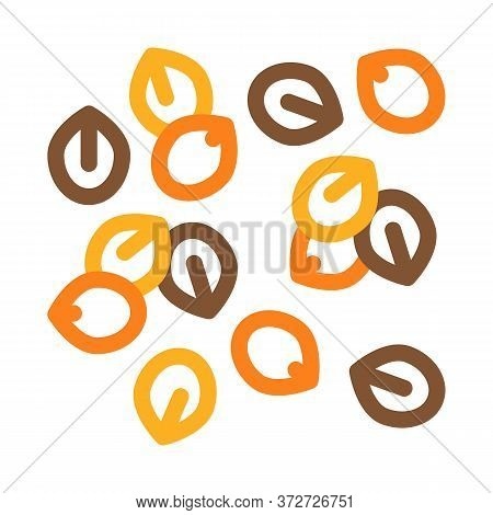 Nuts Seeds Icon Vector. Nuts Seeds Sign. Color Symbol Illustration