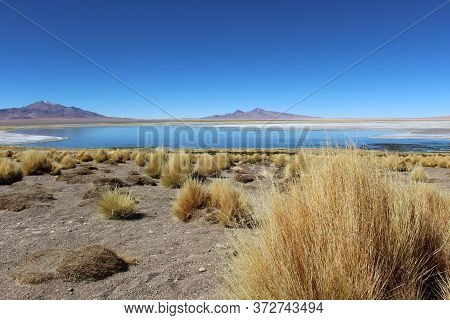 Visão de lago no Salar de Tara, Deserto do Atacama // Lake view in Tara salt flat, Atacama Desert, Chile.