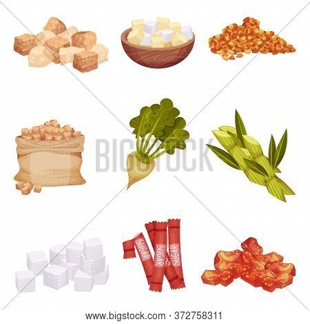Piles Of White And Brown Sugar Cubes With Sugar Beet And Sugarcane Plant Vector Set