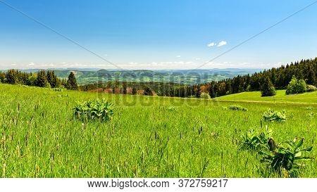 Beautiful Relaxing Green Mountain Meadow In A Hilly Landscape, Krkonose Mountains, Czech Republic, P