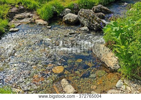 Clear Water In The Stream Creek On Meadow. Clean Creek In The Mountains In A Green Valley. Blurred M