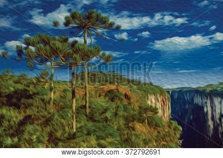 Itaimbezinho Canyon With Steep Rocky Cliffs Covered By Forest And Pine Trees Near Cambara Do Sul. A