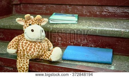Forgotten Soft Toy On The Steps Color General Plan