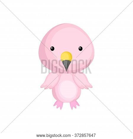 Cute Funny Baby Flamingo Isolated On White Background. Adorable Animal Character For Design Of Album
