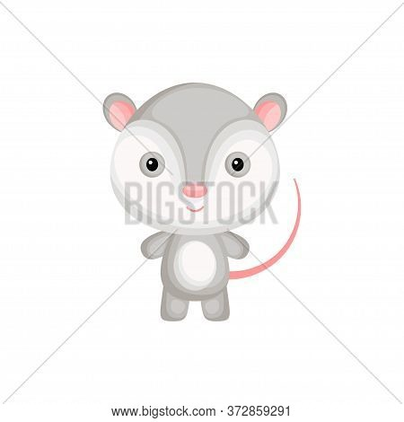 Cute Funny Baby Opossum Isolated On White Background. Adorable Animal Character For Design Of Album,