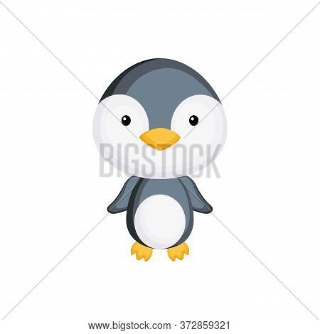 Cute Funny Baby Penguin Isolated On White Background. Arctic Adorable Animal Character For Design Of