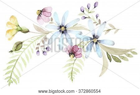Watercolor Bouquet Of Wildflowers. Botanical Spring Composition. Flower Hand Drawn Set