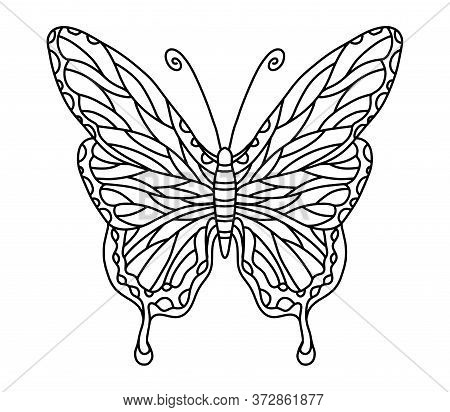 Vector Coloring Book With Butterfly For Adults And Children. Coloring Book With An Insect With Beaut