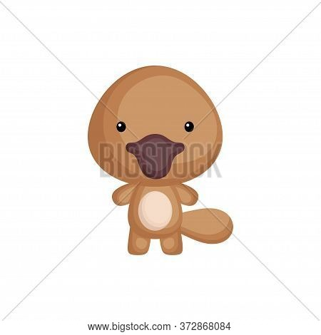 Cute Funny Baby Platypus Isolated On White Background. Australian Adorable Animal Character For Desi
