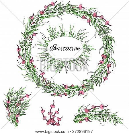 Botanical Collection Of Green Herbs. Hand Drawn Wreath Of Plants And Algae On A White Background. Al