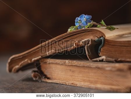 Vintage Books With A Bouquet Of Spring Wild Flowers. Nostalgic Vintage Atmospheric Background. Roman