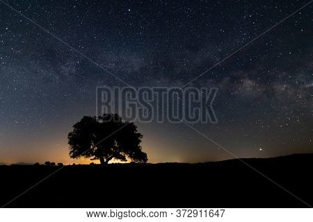 Fantastic starry sky and the milky way