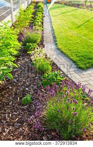 Gardening - Garden with fresh new lawn, bark mulch area to reduce weed growth and your plants