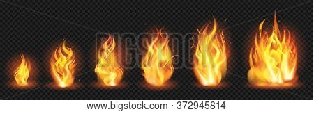 Realistic Flame Concept. Flaring Fire Blaze, Various Size Burning Spurts Of Flame, Growing Wildfire