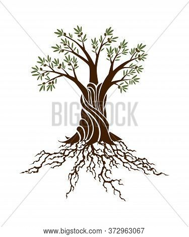 Abstract Green Tree With Strong Plant Roots Silhouette. Tree With Lush Root. Corporate Branding Iden