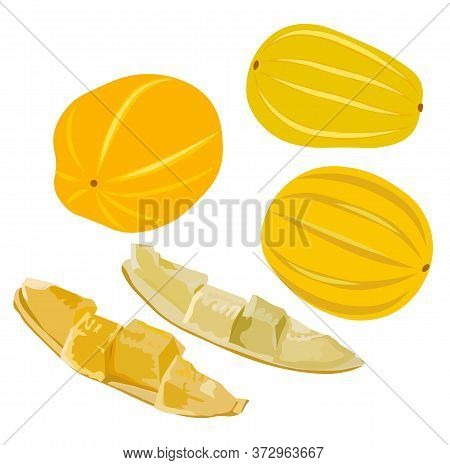 Stock Vector Illustration Of Korean Melon Chamoe. Small Yellow Round Sugar Fruit. Dessert. Sugar Mel
