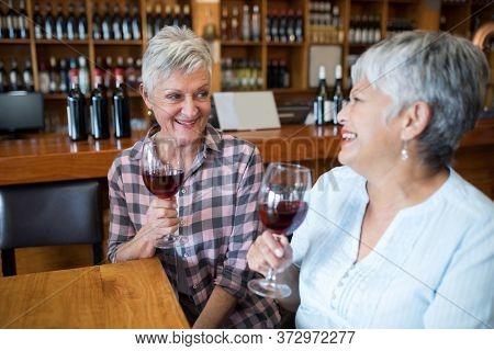 Smiling two female senior friends having red wine in restaurant
