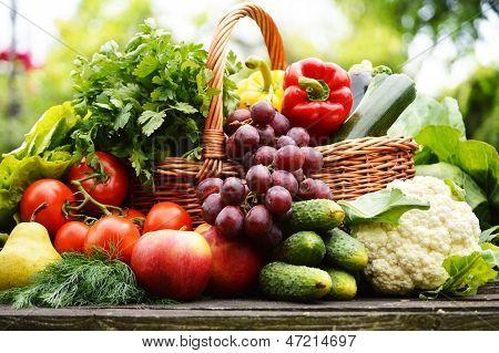 Legumes orgânicos frescos na cesta de vime no jardim