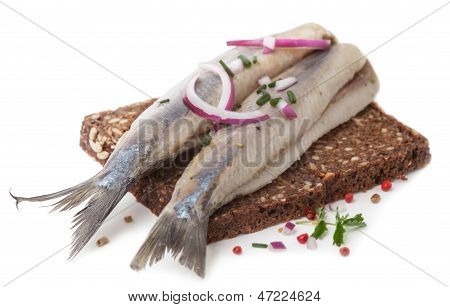 Typical Dutch Herring