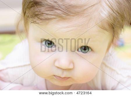 Little Baby Portrait