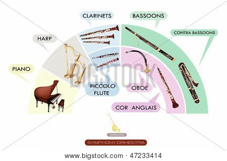 Illustration Collection of Musical Instrument for Symphony Orchestra Piano Harp Clarinet Bassoon Contra Bassoon Piccolo Flute Oboe and Cor Anglais. poster