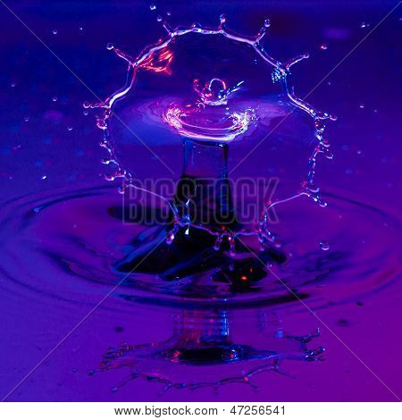 Broad Shield Of Water From A Waterdrop
