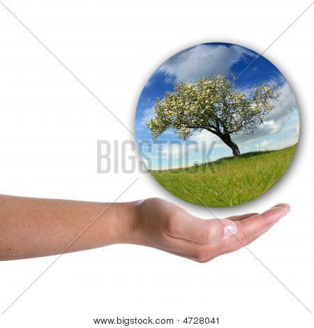 Human Hand Holding Landscape Inside A Bubble